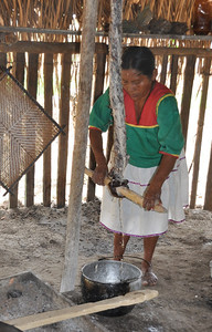 wringing out the moisture from the cassava